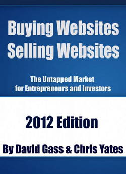 Buying Websites Selling Websites by David Gass and Chris Yates