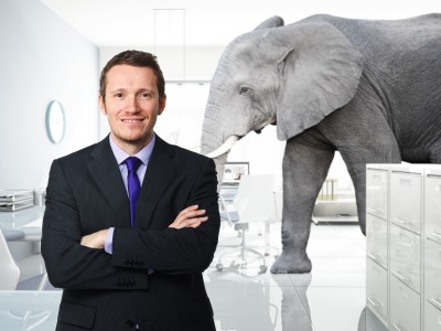 A man in a suit smiles at the camera while an elephant wanders through the office behind him